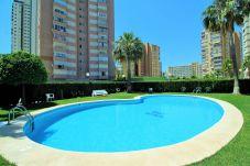 Apartamento en Benidorm - Apartamento para 4 personas a650 mde la playa